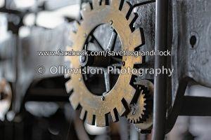Ollievision-128-I45B6951.JPG